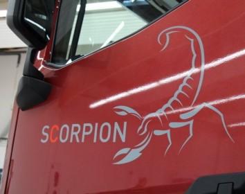 Skorpione gibt es nicht nur in der Wüste