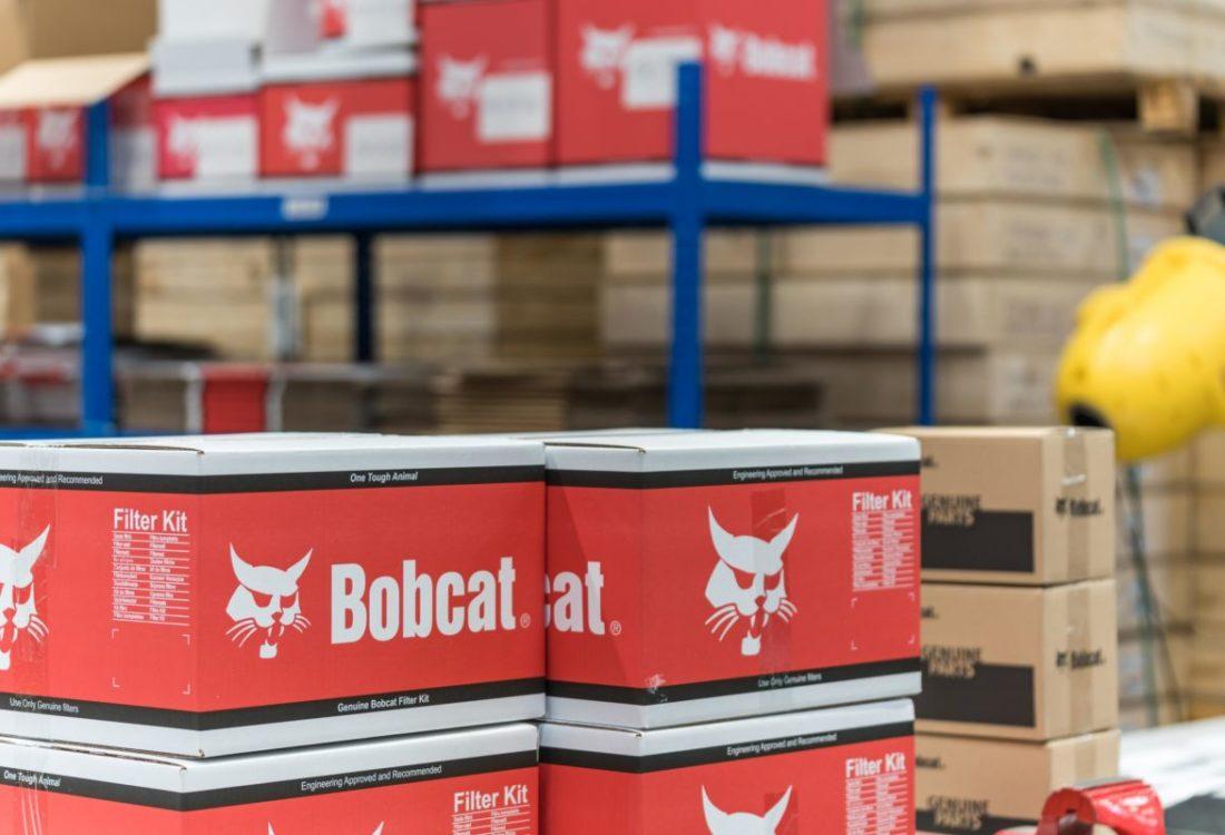 Bobcat (6)